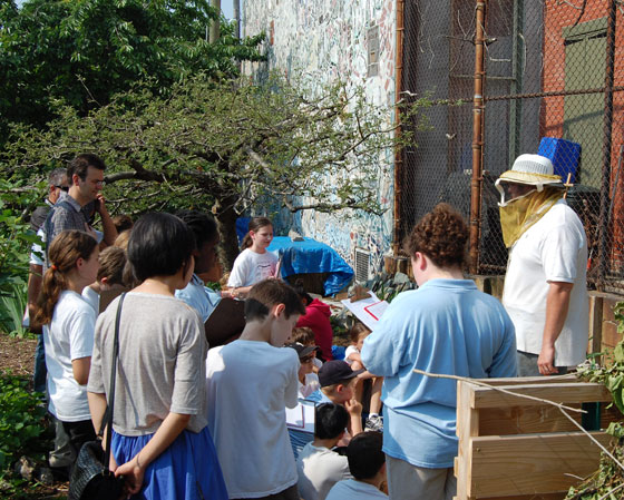 Philadelphia Community Garden Bee Presentation